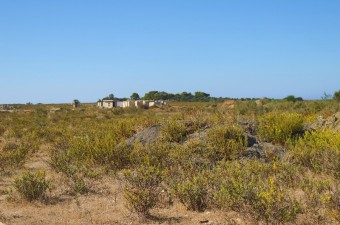 A stunning virgin land located at Gzenaya, near the 'Forêt Diplomatique', with stunning sea view.