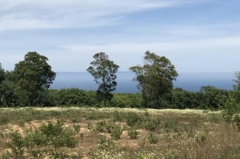 This stunning plot of land of more than 5 hectares in Mediouna, near Cap Spartel, is ideal for a prestigious residential plot.
